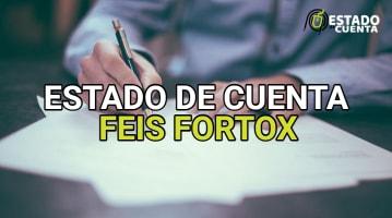Estado de Cuenta Feis Fortox