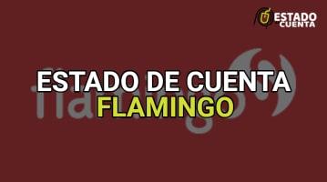 estado de cuenta flamingo