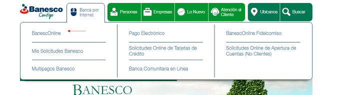Estado de Cuenta Banesco web