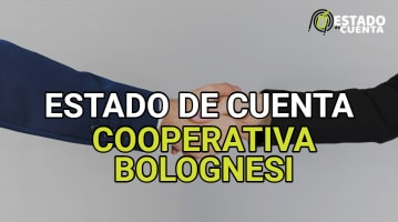 Estado de Cuenta Cooperativa Bolognesi